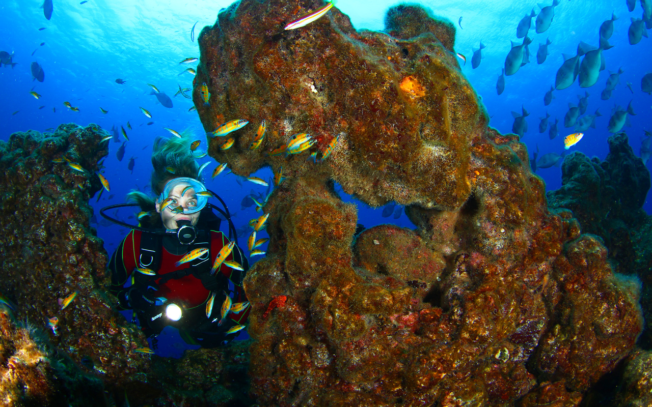 azores-diving